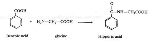Benzoic-Acid1